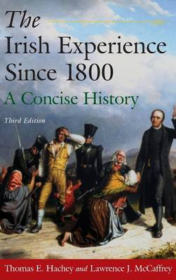 The Irish Experience Since 1800: A Concise History: A Concise History