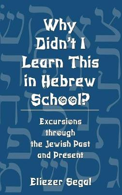 Why Didnt I Learn This in Hebrew School: Excursions Through the Jewish Past and Present