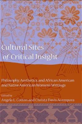 Cultural Sites of Critical Insight: Philosophy, Aesthetics, and African American and Native American Women's Writings