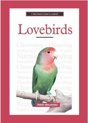 A New Owner's Guide to Lovebirds