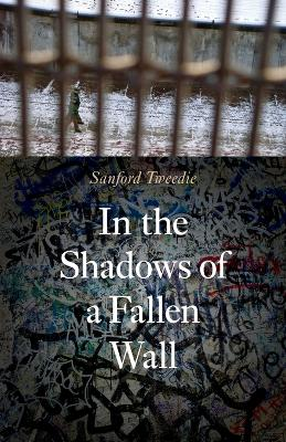 In the Shadows of a Fallen Wall