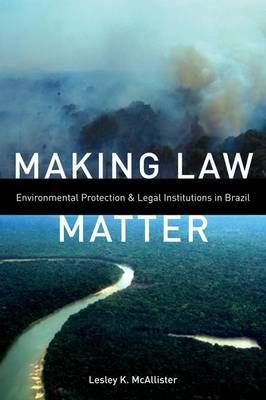 Making Law Matter: Environmental Protection and Legal Institutions in Brazil