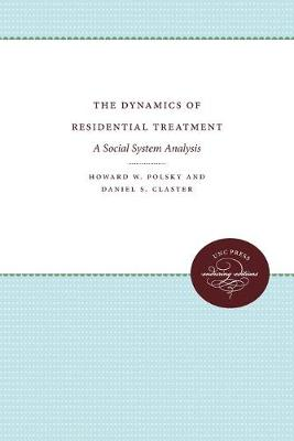 The Dynamics of Residential Treatment: A Social System Analysis