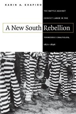 A New South Rebellion: The Battle against Convict Labor in the Tennessee Coalfields, 1871-1896