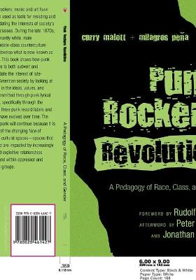 Punk Rockers' Revolution: A Pedagogy of Race, Class, and Gender