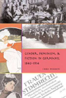 Gender, Feminism, and Fiction in Germany, 1840-1914