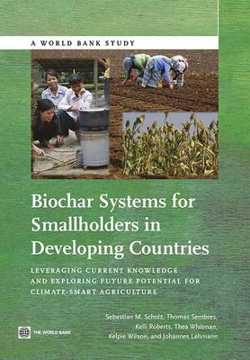 Biochar Systems for Smallholders in Developing Countries: Leveraging Current Knowledge and Exploring Future Potential for Climate-Smart Agriculture