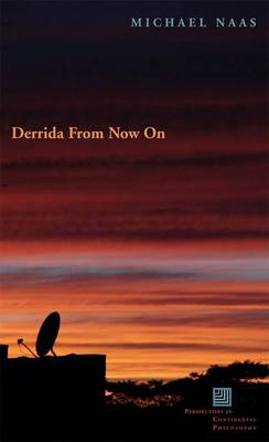 Derrida From Now On