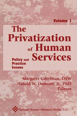 The Privatization of Human Services: Policy and Practice Issues Volume I