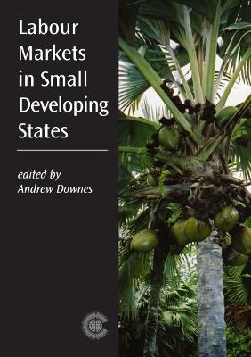 Labour Markets in Small Developing States