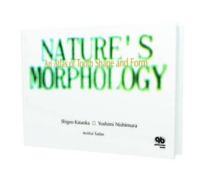 Nature's Morphology: Learn from the Natural Tooth Morphology