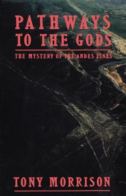 Pathways to the Gods: The Mystery of the Andes Lines