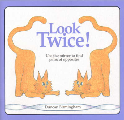 Look Twice: Use the Mirror to Find Pairs of Opposites