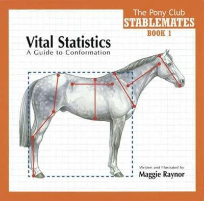 Vital Statistics: A Guide to Conformation