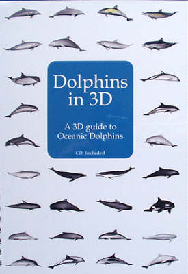 Dolphins in 3D