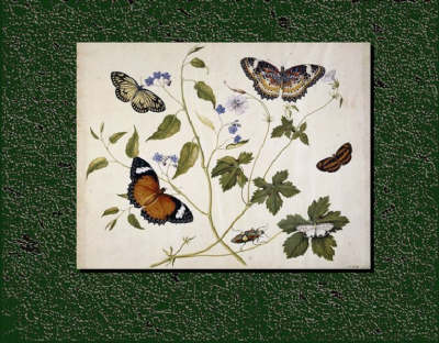 The Seymer Legacy: Henry Seymer and Henry Seymer Jnr of Dorset and Their Entomological Paintings, with a Catalogue of Butterflies and Plants (1755 - 1783)