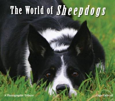 The World of Sheepdogs: A Photographic Tribute
