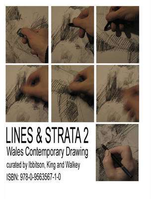 Lines and Strata: Contemporary Wales Drawing: v. 2