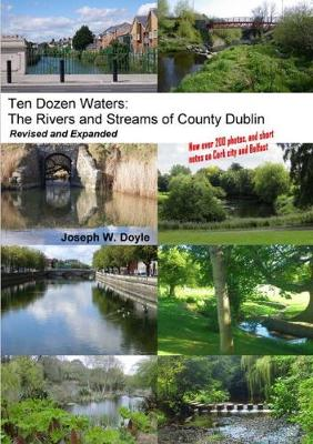 Ten Dozen Waters: The Rivers and Streams of County Dublin