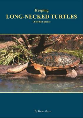 Keeping Long-necked turtles: Chelodina species