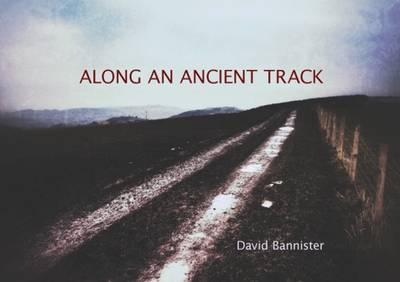 Along an Ancient Track
