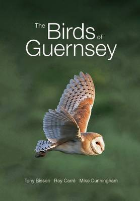 The Birds of Guernsey: A Systematic List