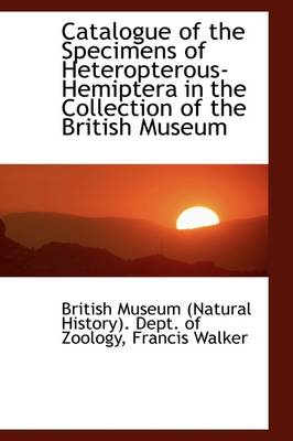 Catalogue of the Specimens of Heteropterous-Hemiptera in the Collection of the British Museum