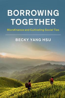 Borrowing Together: Microfinance and Cultivating Social Ties