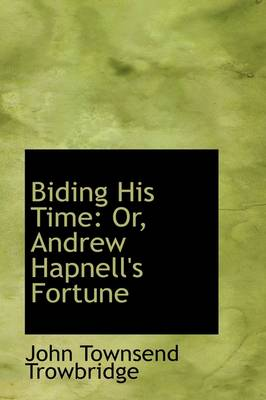 Biding His Time or Andrew Hapnell's Fortune