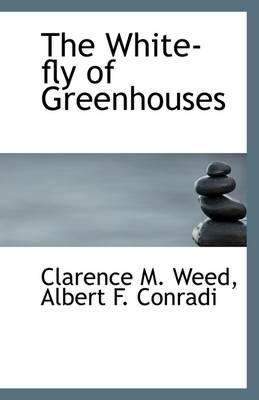The White-Fly of Greenhouses