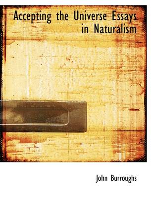 Accepting the Universe Essays in Naturalism