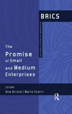 The Promise of Small and Medium Enterprises: BRICS National Systems of Innovation