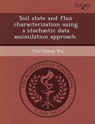 Soil State and Flux Characterization Using a Stochastic Data Assimilation Approach