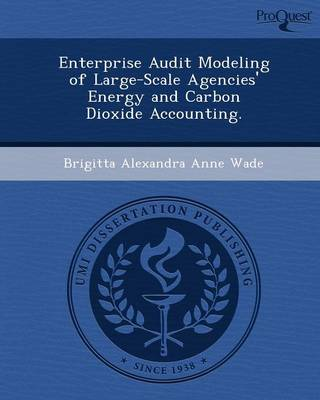 Enterprise Audit Modeling of Large-Scale Agencies' Energy and Carbon Dioxide Accounting