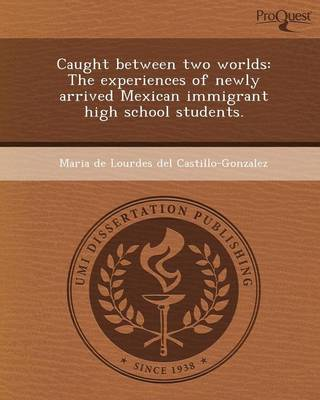 Caught Between Two Worlds: The Experiences of Newly Arrived Mexican Immigrant High School Students
