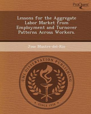 Lessons for the Aggregate Labor Market from Employment and Turnover Patterns Across Workers