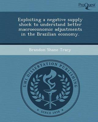 Exploiting a Negative Supply Shock to Understand Better Macroeconomic Adjustments in the Brazilian Economy