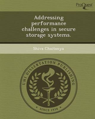 Addressing Performance Challenges in Secure Storage Systems