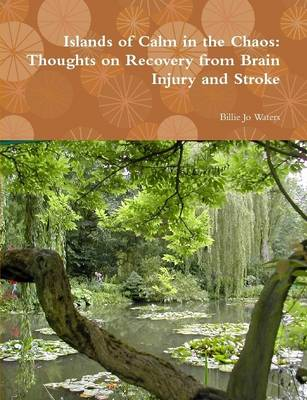 Islands of Calm in the Chaos: Thoughts on Recovery from Brain Injury and Stroke