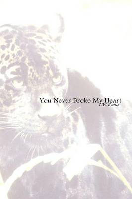 You Never Broke My Heart