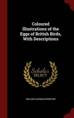 Coloured Illustrations of the Eggs of British Birds, with Descriptions