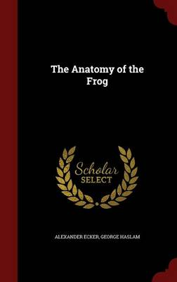 The Anatomy of the Frog