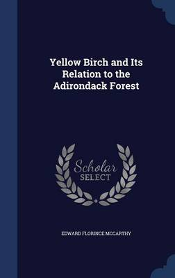 Yellow Birch and Its Relation to the Adirondack Forest
