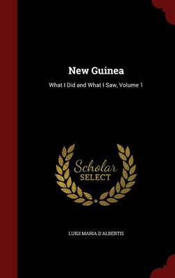 New Guinea: What I Did and What I Saw, Volume 1