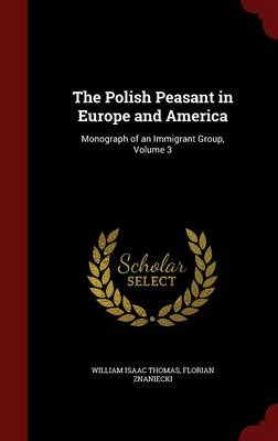 The Polish Peasant in Europe and America: Monograph of an Immigrant Group, Volume 3
