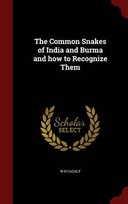 The Common Snakes of India and Burma and How to Recognize Them
