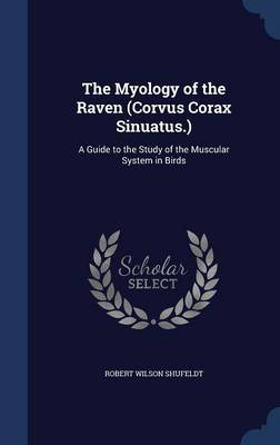 The Myology of the Raven (Corvus Corax Sinuatus.): A Guide to the Study of the Muscular System in Birds