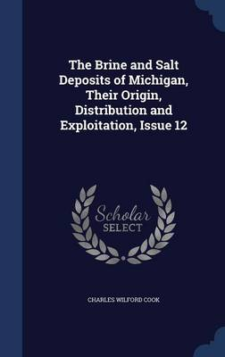 The Brine and Salt Deposits of Michigan, Their Origin, Distribution and Exploitation, Issue 12