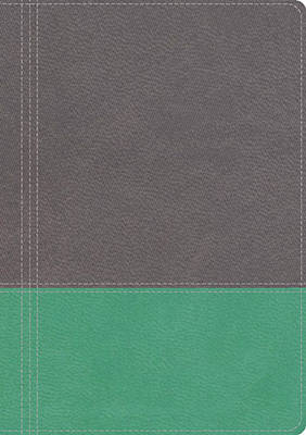 NKJV, The Modern Life Study Bible, Imitation Leather, Gray/Green, Indexed: God's Word for Our World