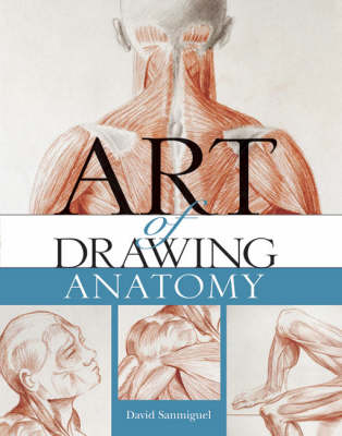 Art of Drawing Anatomy
